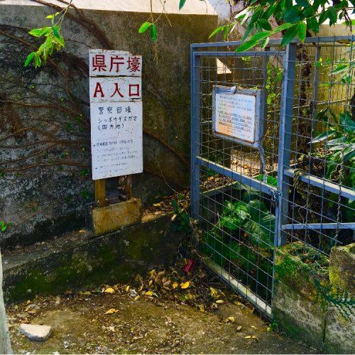 那覇市真地の識名霊園に残る「県庁・警察部壕」