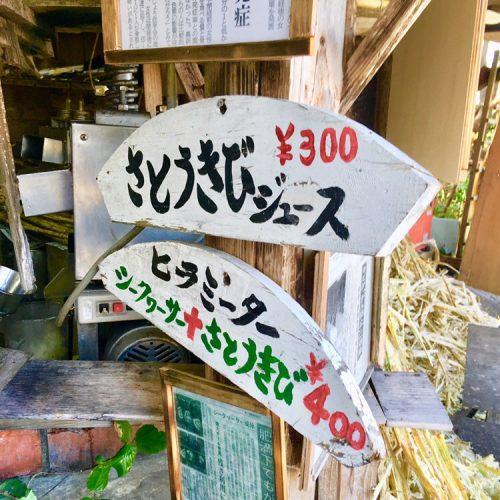今帰仁城「桜祭り」でサトウキビジュースと桜アイス!