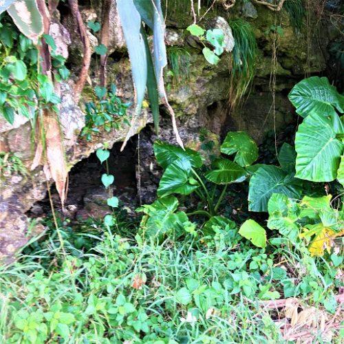 伊江島の東江上に残る「山グシの砲台跡」