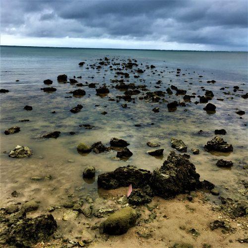 石垣市宮良の海岸に残る「桟橋跡」