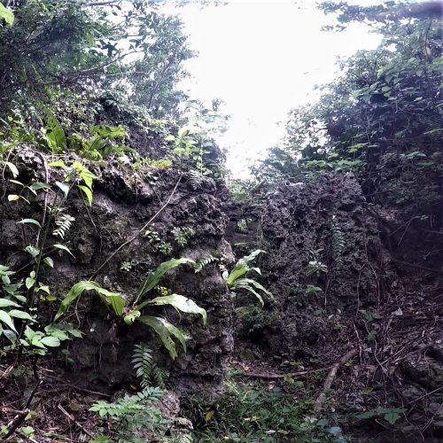 沖縄県中頭郡北中城村に残る「大城の銃眼」