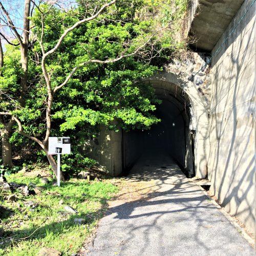 周南市大津島に残る「訓練基地へ続くトンネル」